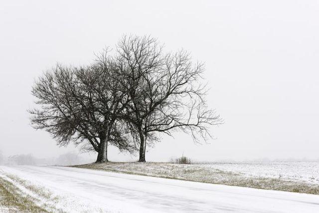 winter-3931537__480